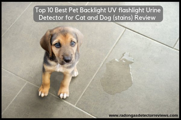 Top 10 Best pet backlight UV flashlight urine detector for cat and dog (stains) Review Amazon