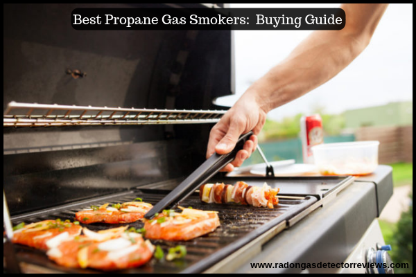 Things to consider before Purchasing a Best Propane Gas Smokers Buying Guide