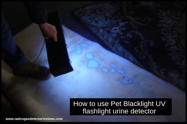 how-to-use-pet-blacklight-uv-flashlight-urine-detector-for-cat-and-dog